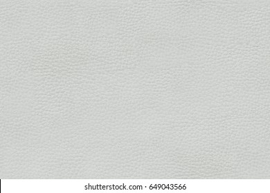 Seamless Texture Of The Leather White