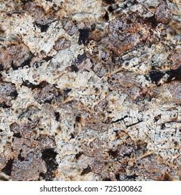 Seamless texture. Surface rocks of Khibiny Mountains. Close up shot