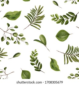 Seamless watercolor pattern with green branches and leafs on white background. Herbs for cosmetics, package, textile, cards