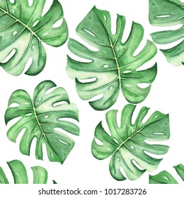 Seamless watercolor pattern of monstera leaves. Perfect for invitations, greeting cards, bouquet, logos, Birthday cards.