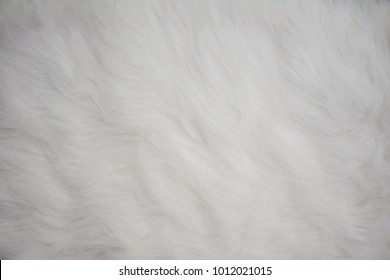 Seamless White Fur Carpet Texture as Design Template or Background with Empty Space for Text. Synthetic White Fur Textile useful as Fluffy Wool Backdrop Pattern or Wallpaper. Soft and Comfy Feeling.