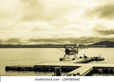Seaplane land on harbor,  sepia tone.