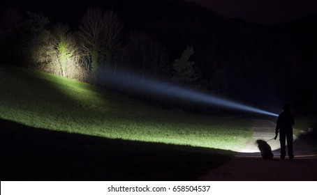 Search light shining on a hill side with trees