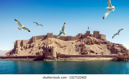 Seascape with ancient Castle of Saladin on the Farun Island in the Gulf of Aqaba and flying seagulls over the Red Sea. Old fortress of Sultan Salah El Din in Taba, travel on Sinai Peninsula.
