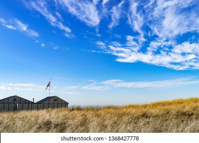 Seascape with a blue sky and dunes with sea grass.  Sea dunes with yellow grass. Bright blue sky with white cirrus clouds.