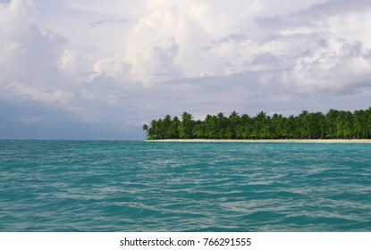 seascape with blue water palms and white sand