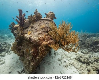 Seascape of coral reef in Caribbean Sea around Curacao at dive site Tugboat Saba with sunken Tugboat and coral and sponge