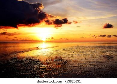 Seascape during sundown. Beautiful natural summer seascape.