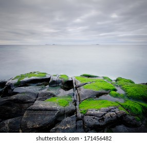 Seascape with green algae growing on foreground rocks