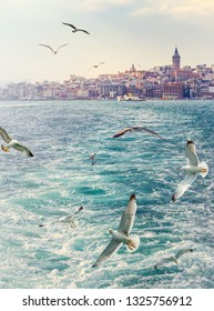 Seascape of Istanbul with Galata tower on skyline and flying gulls over the gulf of  Golden Horn. Your travel background for vertical poster about Turkey.