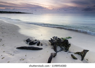 Seascape of a piece of driftwood on a tropical beach at sunset