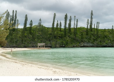 seascape of Pines Island, new caledonia with turquoise sea and typical araucaria trees. someone walking on the beach. cabin massage in the background. Cloudy sky