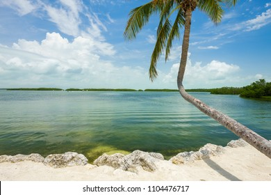 Seascape view of the popular Florida Keys along the bay.