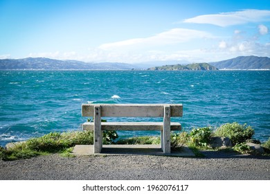Seascope with solitary wooden bench at ocean edge