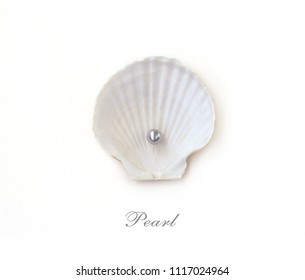 seashell with pearl, isolated on white background, space for text, inscription