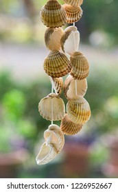 Seashells hanging on a string over a blurred outdoors green background