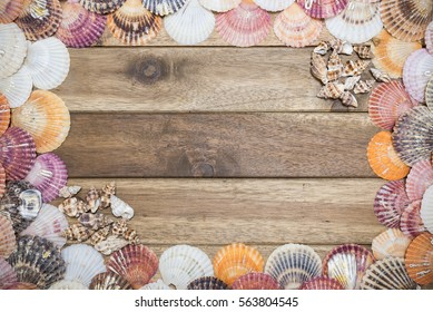 Seashells on a wooden background with copy space