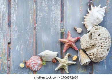seashells starfish corals snrctist glass balls and bottles on a wooden weathered gray background with sprinkles of green and orange with noise effect of scratches and corrosion top view