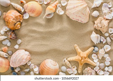 Seashells, starfish and sea pebbles frame on beach sand background. Natural seashore textured surface, top view, copy space