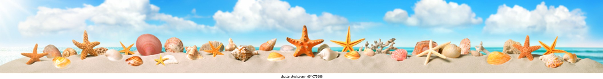 Seashells and starfish smartly arranged in a long row on the sandy beach, nice sky background, panoramic banner format