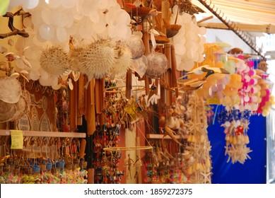 Seashells in the Street Travel