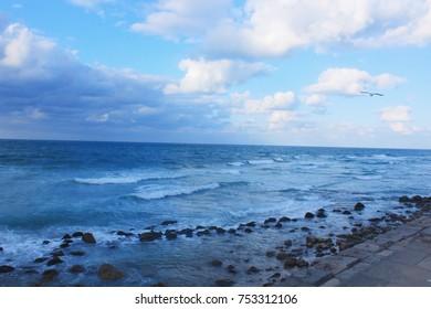 Seashore in Alexandria /  Beautiful sea side view of Alexandria in mediterranean sea