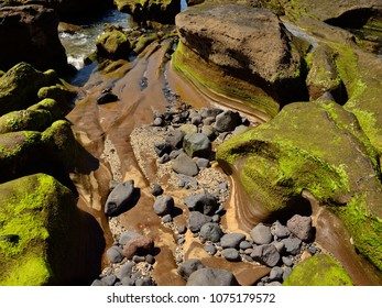 Seashore at low tide, The confital, coast of Gran canaria, Canary islands