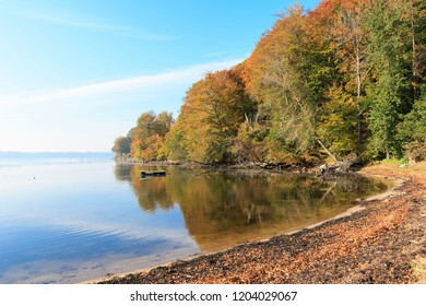Seashore on a bright day. Haze over water in the background. Leaves on the ground. Trees with autumn colours.