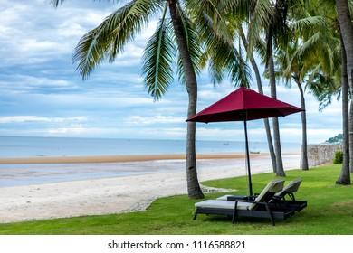 Seaside coconut tree and beach chairs