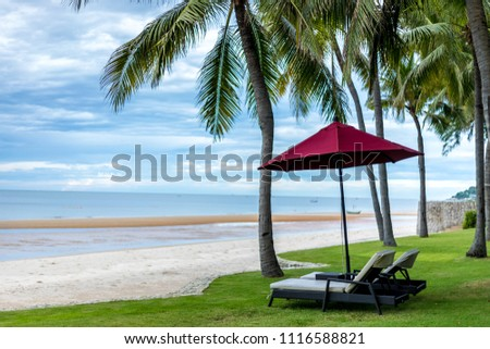 Seaside coconut tree and beach chairs