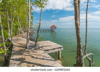 Seaside wooden walkway,Wooden bridge for dock connection,The walkway is made of wood.