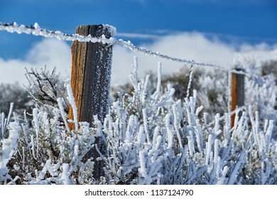 Season changing, landscape with hoarfrost on the fence
