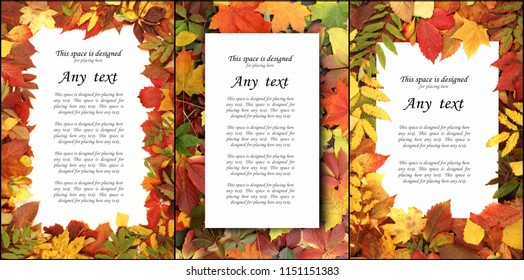 Seasonal autumn background of colorful leaves. Collage collection.