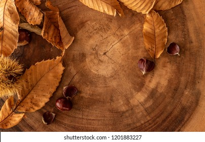 seasonal fall background with leaves, chestnuts and a log.