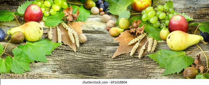Seasonal fruit, autumn fruit - autumn harvest is healthy food (healthy eating)
