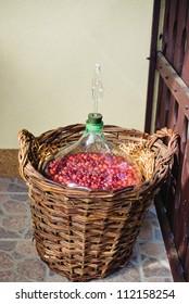 Seasonal fruits fermenting in jar