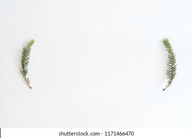 seasonal minimalistic background. fir tree branches on white background. christmas wallpaper design. simple new year natural decor. free space concept.