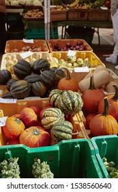 Seasonal pumpkins and winter squash for sale at a farmers market in Copley Square on a Fall day.  Boston, Massachusetts. Cucurbita Pepo and Cucurbita maxima