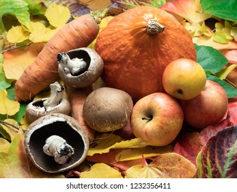 Seasonal vegetables placed on coloured autumn leaves. There are mushrooms, apples, sweet patato, red kuri squash and carrots.