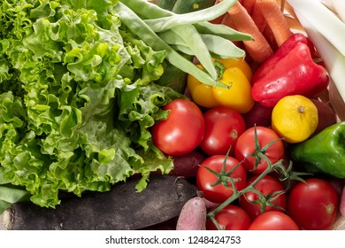 the seasonal vegetables, tomatoes, peppers and other