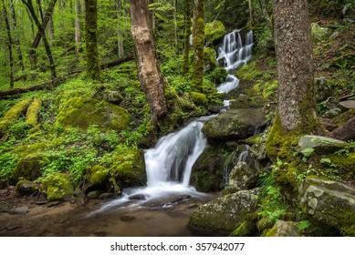 Seasonal waterfall, Great Smoky Mountains National Park