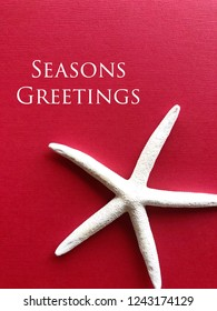 Seasons Greetings tropical holiday concept. White star fish against a cheery red background.