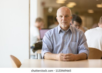 Seated Business man calmly looking into the camera