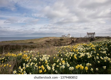 Seaton Sluice harbour in Northumberland is a tidal harbour for small craft and this image was shot at high tide on a calm sunny morning in March with the colourful daffodils in full bloom.