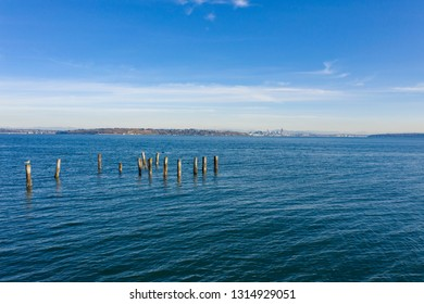 Seattle Skyline View From Bainbridge Island Waterfont Seagulls