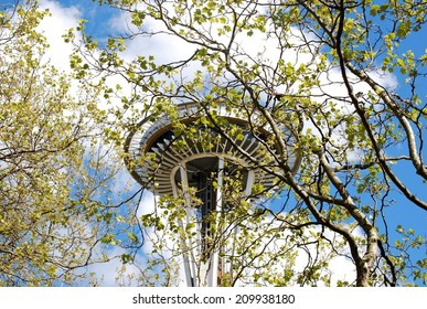The Seattle Space Needle Seen Through Trees