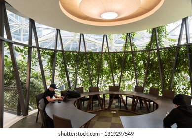 Seattle, Wa circa February 2019 Interior views of the Amazon world headquarters Spheres green house terrariums, one of the meeting areas.