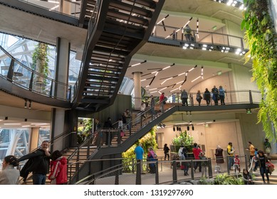 Seattle, Wa circa February 2019 Interior views of the Amazon world headquarters Spheres green house terrariums, underside of multi level stairs with people.