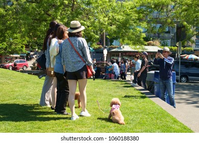 Seattle, WA, USA May 28, 2017: Group of four women and two dogs having their photo taken by a man using a smartphone on a grassy knoll at Pike Place Market in Seattle, Washington