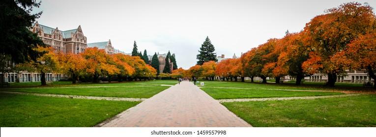 Seattle, WA / USA- Oct 25, 2016: Fall at the Quad, University of Washington